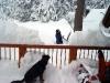 snow05-4
