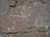 petroglyphs6